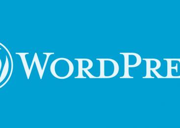 WordPress Blog Açmak